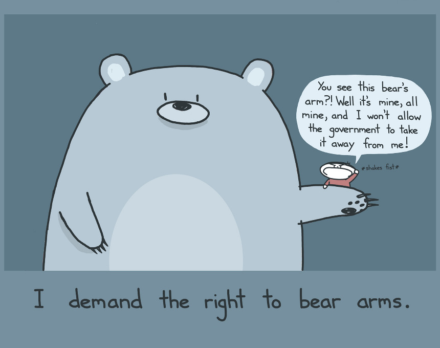 Rights to bear arms essay