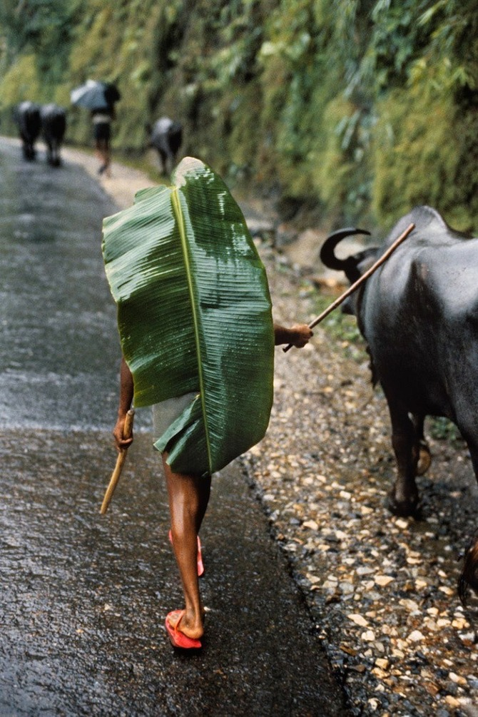 Right as Rain by Steve McCurry in THISISPAPER MAGAZINE